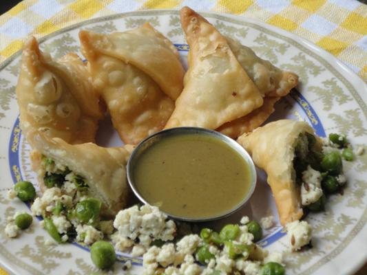 Which Samosa Are You Cooking Today?
