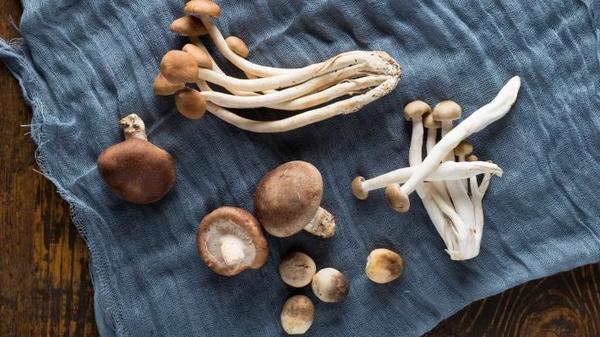 Benefits of Eating Mushrooms