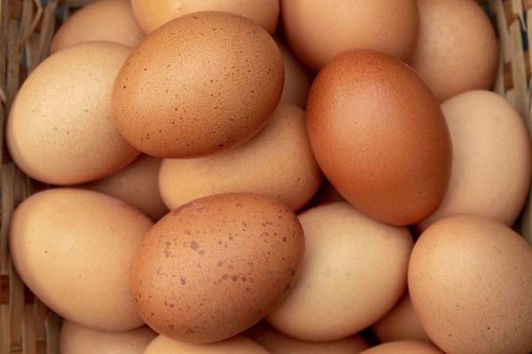 New Research Links Egg Consumption with Heart Disease
