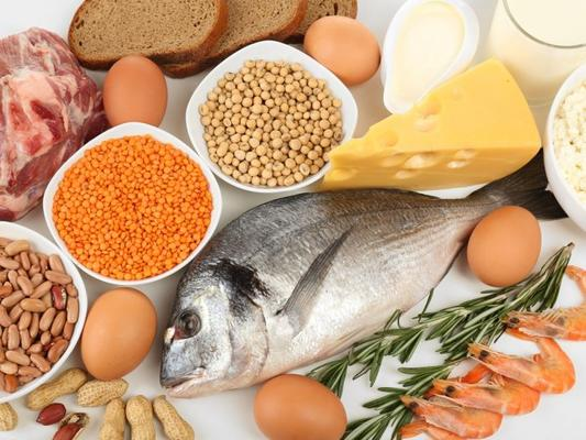 Protein Rich Food Items for Everyone