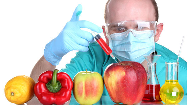 What are Genetically Modified Foods & Why They are Bad for You?