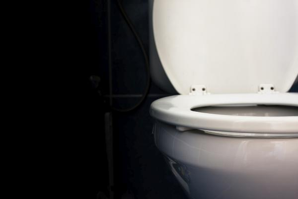 How to Protect Your Family Against Toilet Plume
