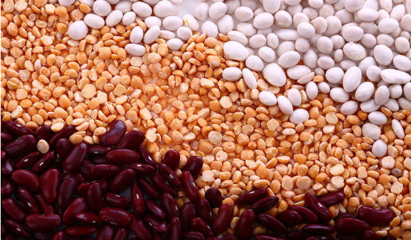 How To Get Your Dose of Protein From a Vegetarian Diet
