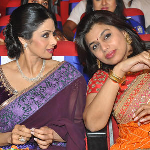 Sridevi And Pinky Gossip Still At TSR-TV9 National Film Awards 2011-2012 Presentation Function