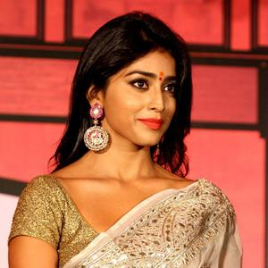 Shriya Saran Ravishing Hot Look In Saree At The 4th NBC Awards 2013