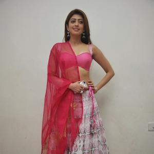 Pranitha Subhash Glamour Sexy Look During The Thank You Press Meet Function Of Attarintiki Daredi Movie