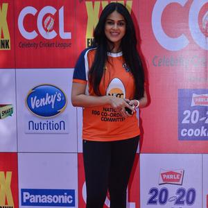 Genelia D'Souza Smiling Pose At CCL Red Carpet 2015