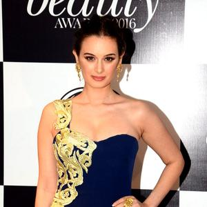 Evelyn Sharma hints that she is looking to do films in Hollywood