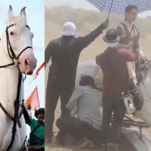 Kangana Ranaut gets trolled for riding a dummy horse in Manikarnika