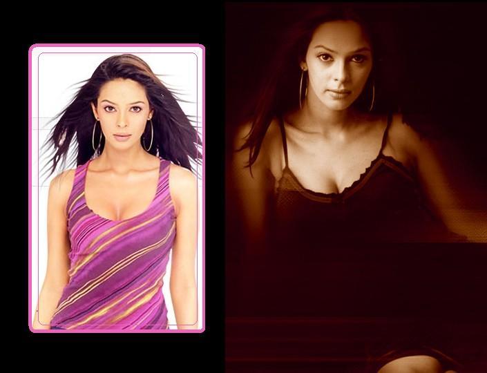 Mallika Sherawat Amazing Looks