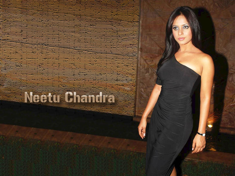 Neetu Chandra sleeveless dress wallpaper