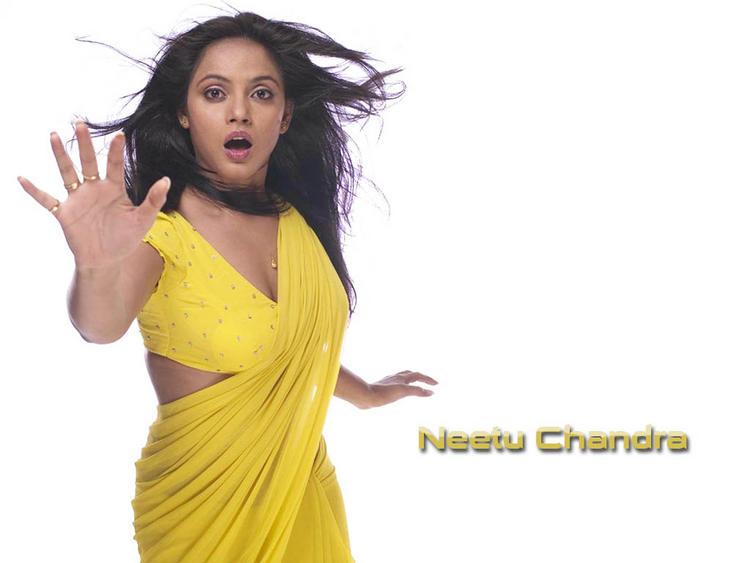 Neetu Chandra with yellow saree wallpaper