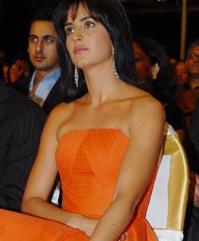 Katrina Kaif sleeveless dress hot pic