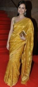 Dia Mirza in saree