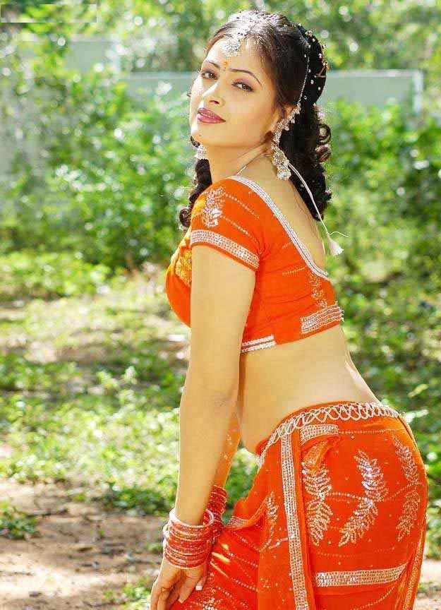 South Indian Actress Navneet Kaur hot saree images