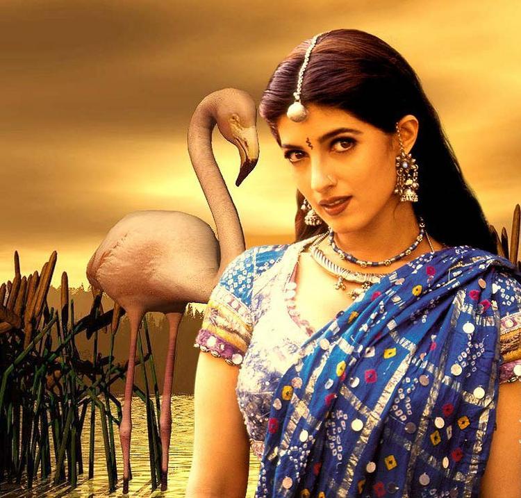 Twinkle Khanna half saree wallpaper