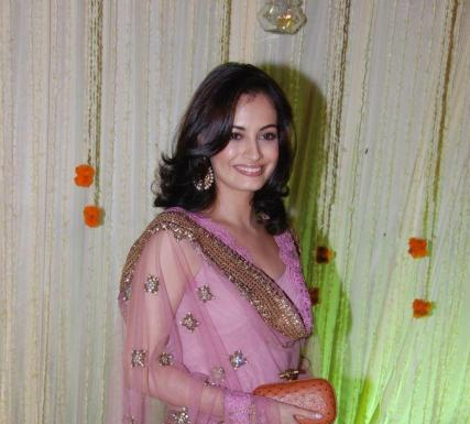 Dia Mirza at Vivek and Priyanka Alva's wedding reception