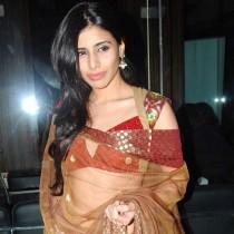 Sonia Mehra  in saree wonderful look