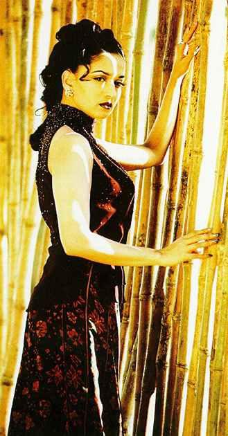 Madhuri Dixit sexy figure latest wallpaper