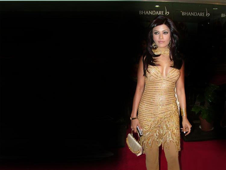 Koena Mitra amazing dress wallpaper