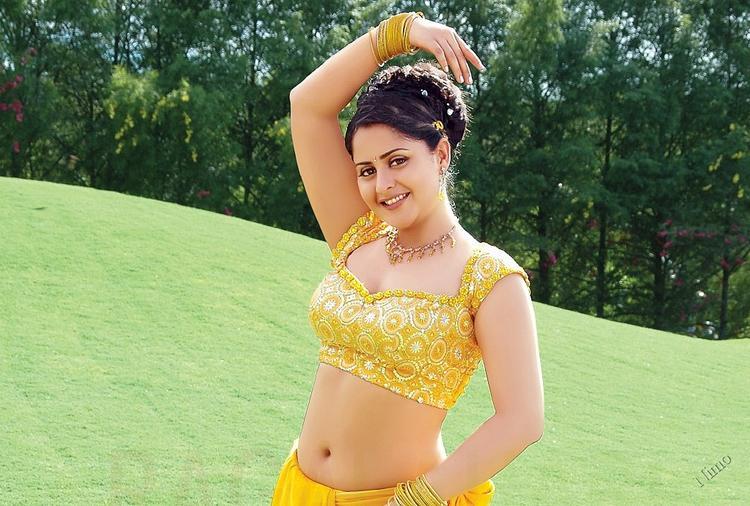 Tollywood Beauty Farzana sexy navel pose