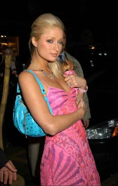 Paris Hilton pink color dress gorgeous photo