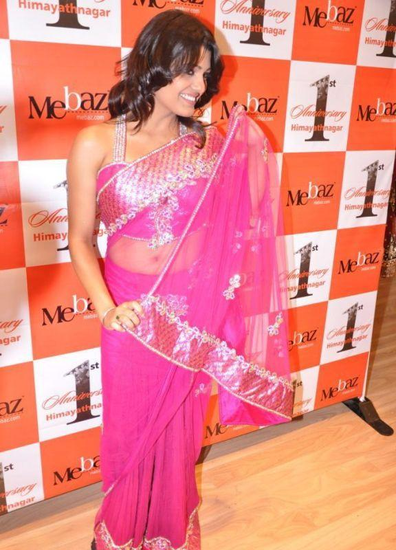 Tashu Kaushik  hot pose in transparent saree