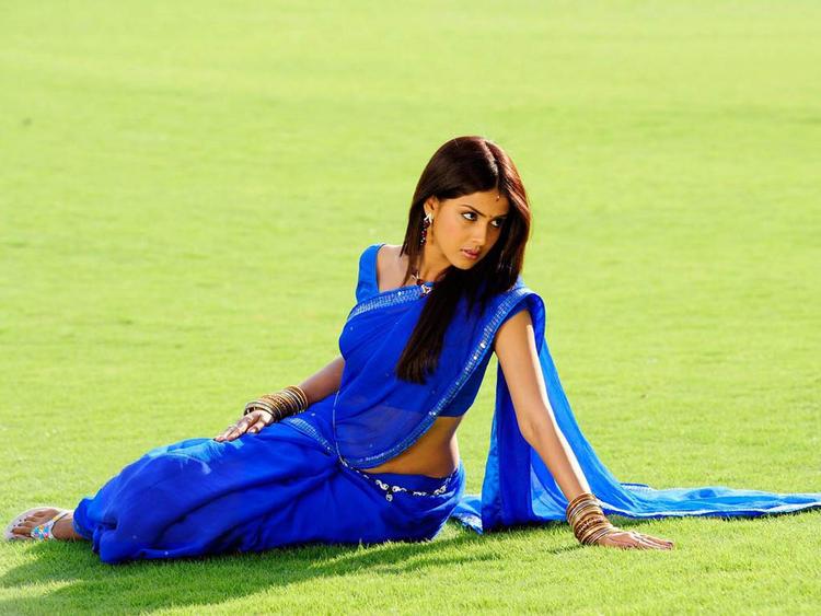 Genelia in blue saree hot look