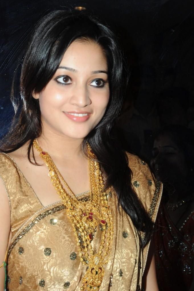 Ritu Barmecha silk saree launch photo