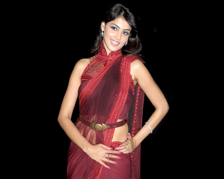Genelia  D'souza sexy saree latest wallpaper