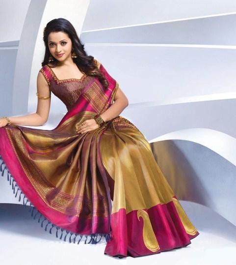 Bhavana in saree glorious photo