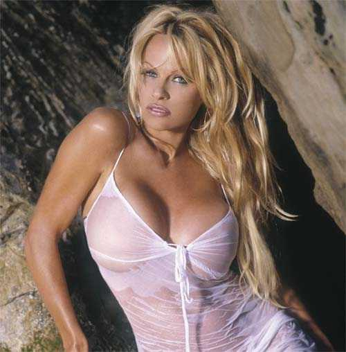 Pamela Anderson latest hot photo