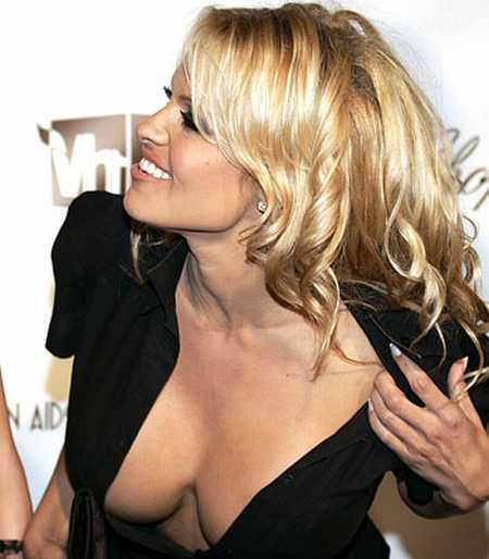 Pamela Anderson opening dress sexy photo