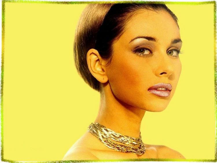 Lisa Ray Hair Style Latest Wallapper