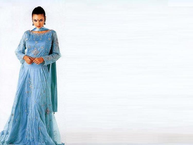 Lisa Ray Beautiful Dress Wallpaper