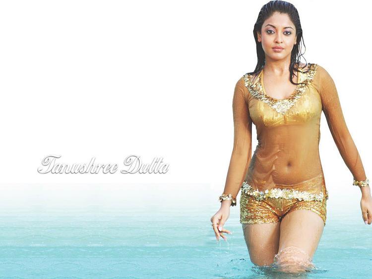 Tanushree Dutta Sexy Navel Show Wallpaper