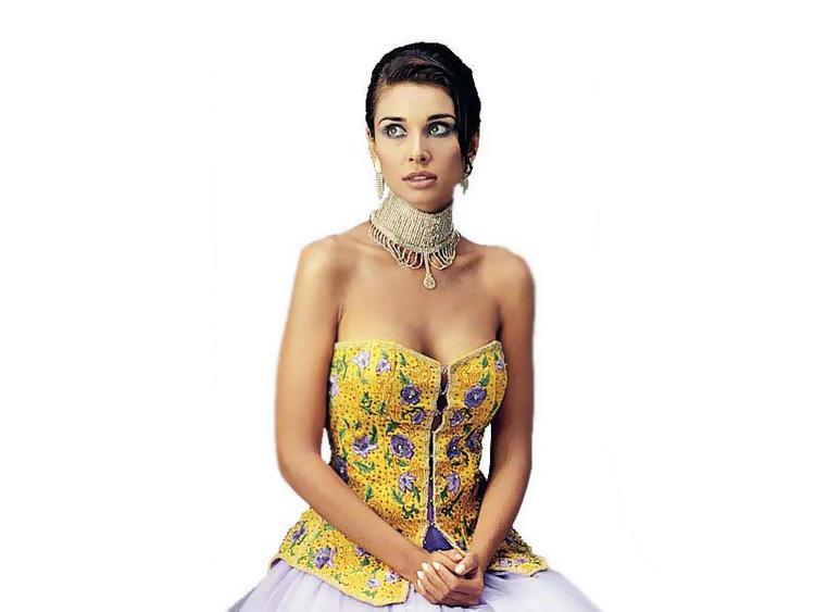 Lisa Ray Sleeveless Dress Hot Wallpaper