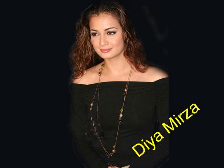 Diya Mirza Curly Hair Style Wallpaper