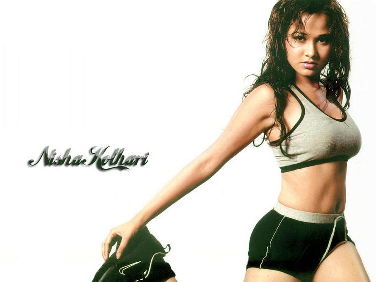 Nisha Kothari Spicy Navel Pose Hottest Wallpaper