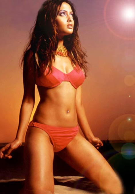 Riya Sen Bikini Hot Sexy Navel Show Wallpaper
