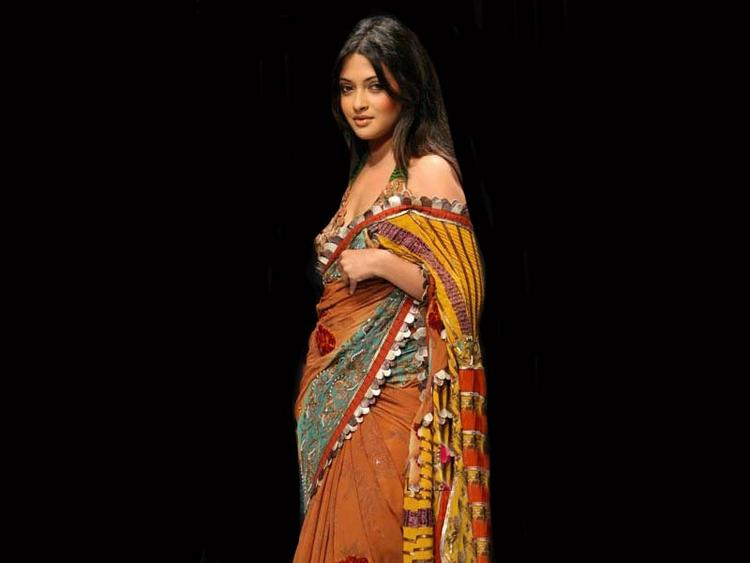Hot Babe Riya Sen In Saree