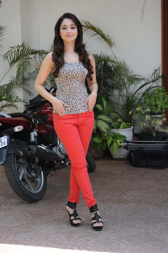 Tamanna Latest Photo Shoot Glamour Photo