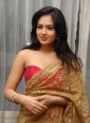 Nikesha Patel Gold Color Saree Awesome Pic