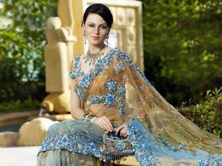Yana Gupta Saree Small Pic