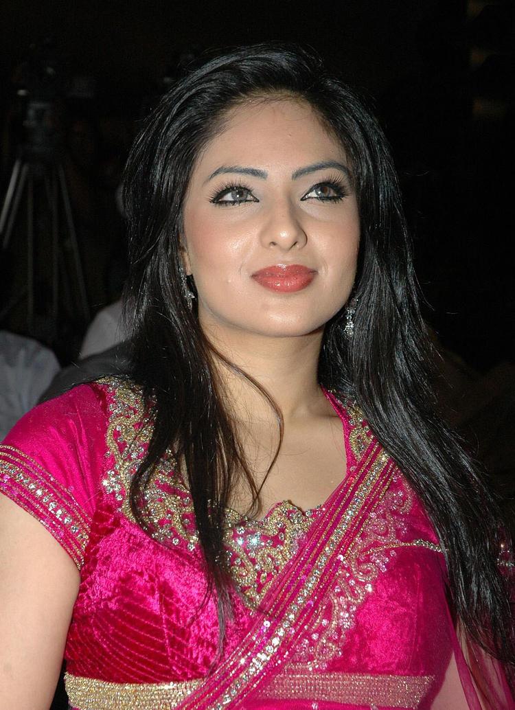 Nikeesha patel in sexy saree