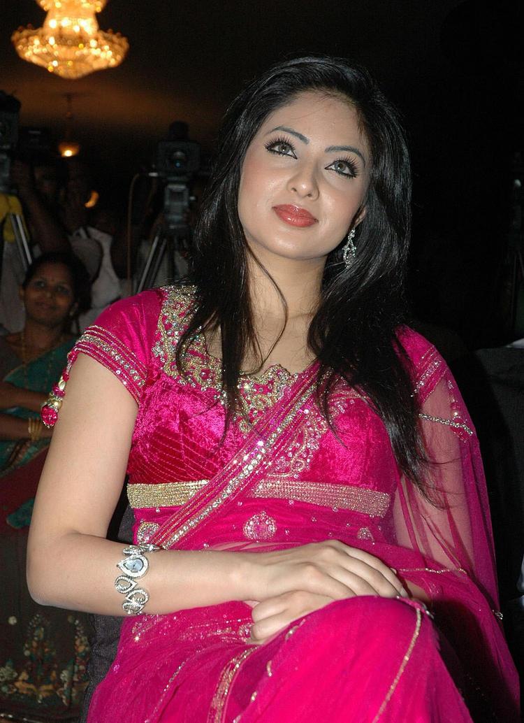 Glorious Nikeesha patel in saree