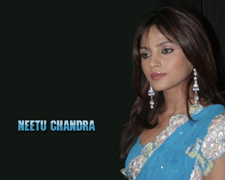 Neetu Chandra in saree