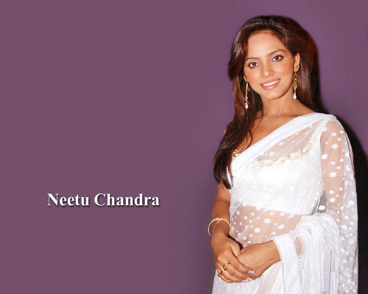 Neetu Chandra in sexy white saree