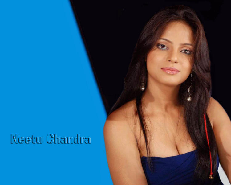 Neetu Chandra lovely wallpaper