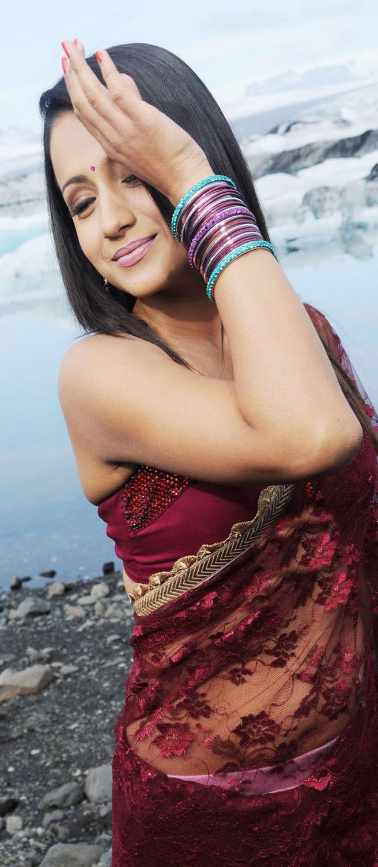Trisha Latest Hottest Pics in Saree
